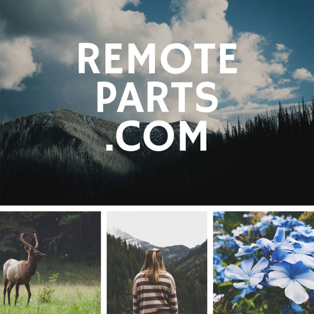 RemoteParts/com domain name for sale