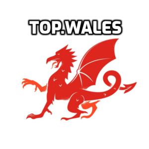 top wales top cymru domain name for welsh website